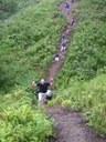 Through the gully before Burtner Road