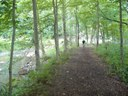 Along Deer Creek in Emmerling Park