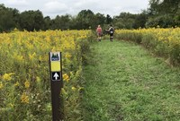 Expanded Trails in North Park